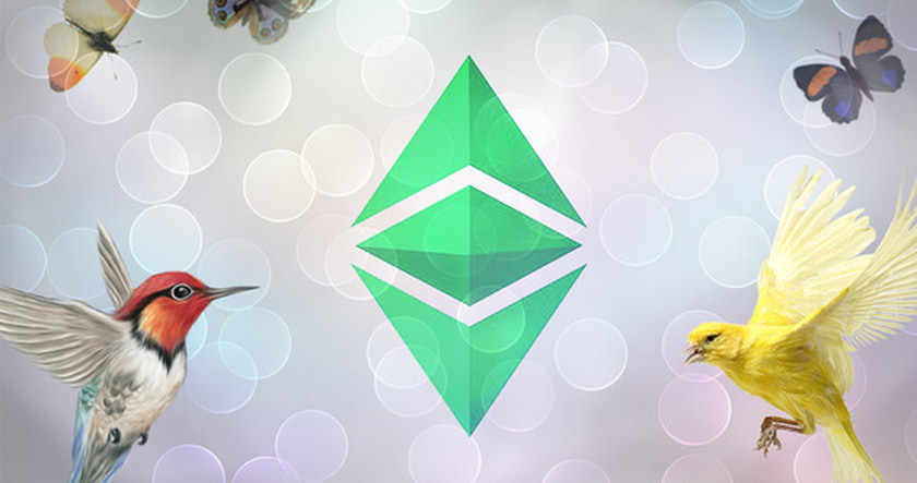 Ethereum birds